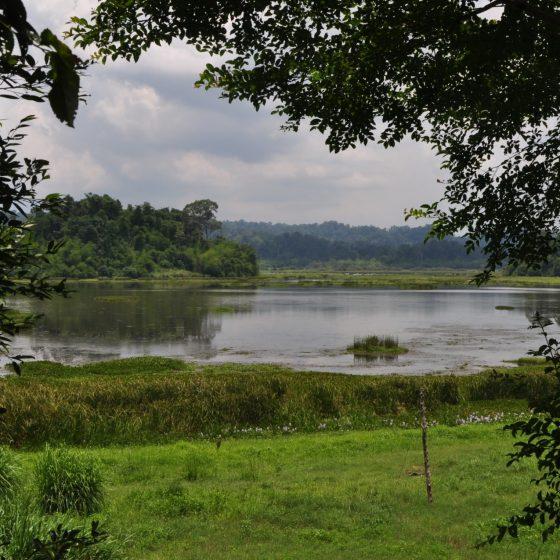 Exotic river in Cat Tien national park