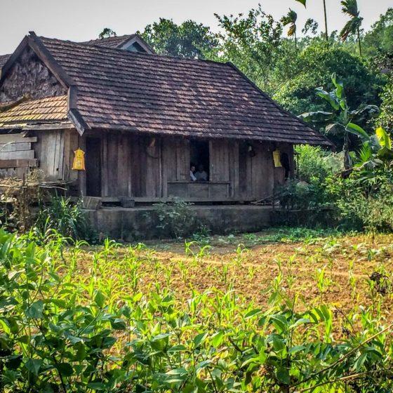 Phong Nha - Dong Hoi - house 1