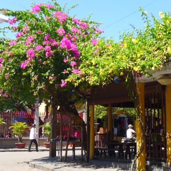 city life in Hoi An's Ancient Streets