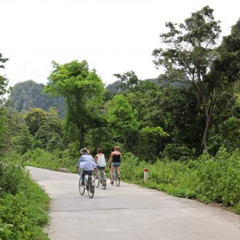 tours in Halong Bay