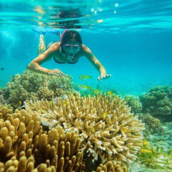 snorkling diving vietnam