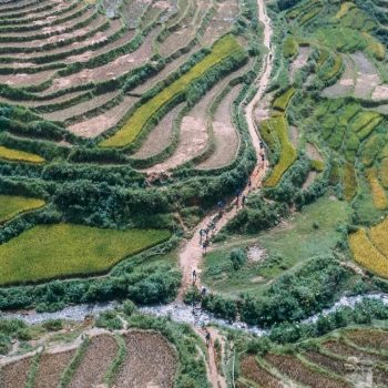 Impressive rice fields of Sapa captured from above