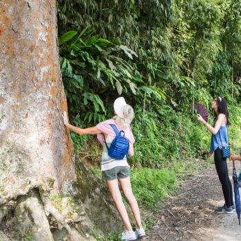 sapa hiking family local road